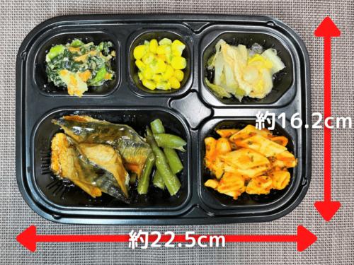 ワタミの宅食ダイレクト・いつでも五菜弁当容器の大きさ